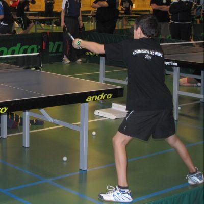 Tennis de table adonis