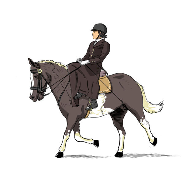 Dessins - equitation